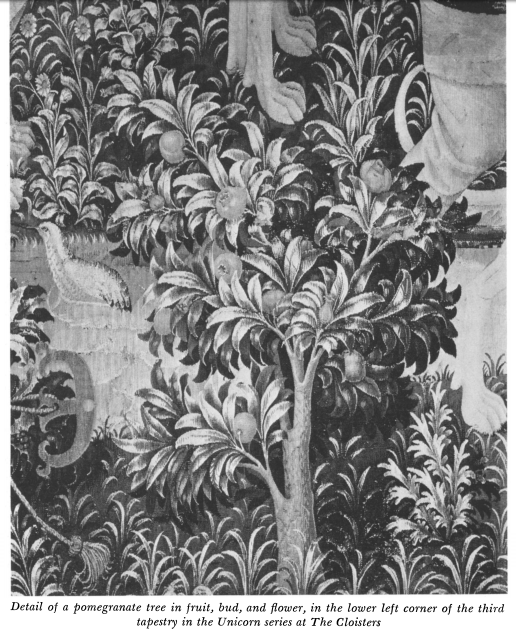 Detail of a pomegranate tree in fruit, bud, and flower, in the lower corner Of the third  tapestry in the Unicorn series at The Cloisters